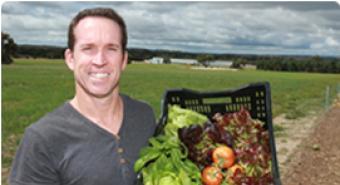 Greenhouse Joy as Produce Flourishes