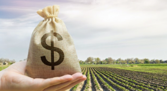 Investors back Wide Open Agriculture's growth strategy in $8.5m equity raising