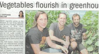 Vegetables Flourish in Greenhouse
