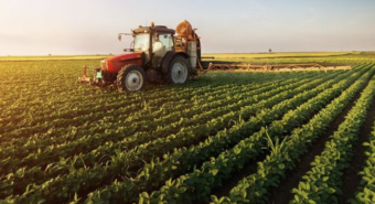 Wide Open Agriculture (ASX:WOA) Stock Soared An Exciting 503% In The Last Year