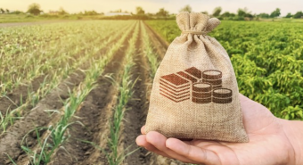 Wide Open Agriculture share purchase plan more than doubles original target amount